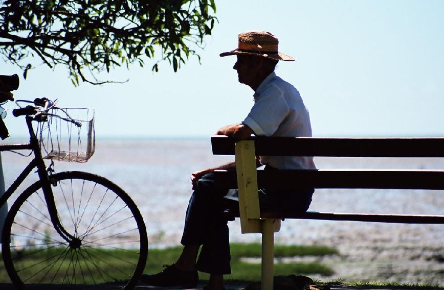 香菇——花样守护老年人心血管